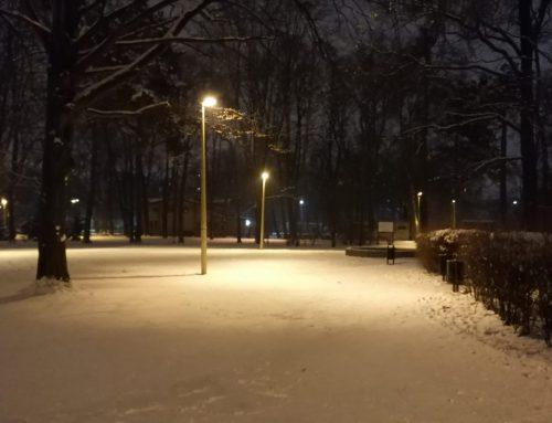 Korzyści z zimowych spacerów!